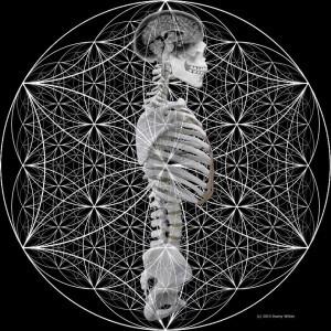 osteopathie-ilbrink nu al niet meer wie je net was